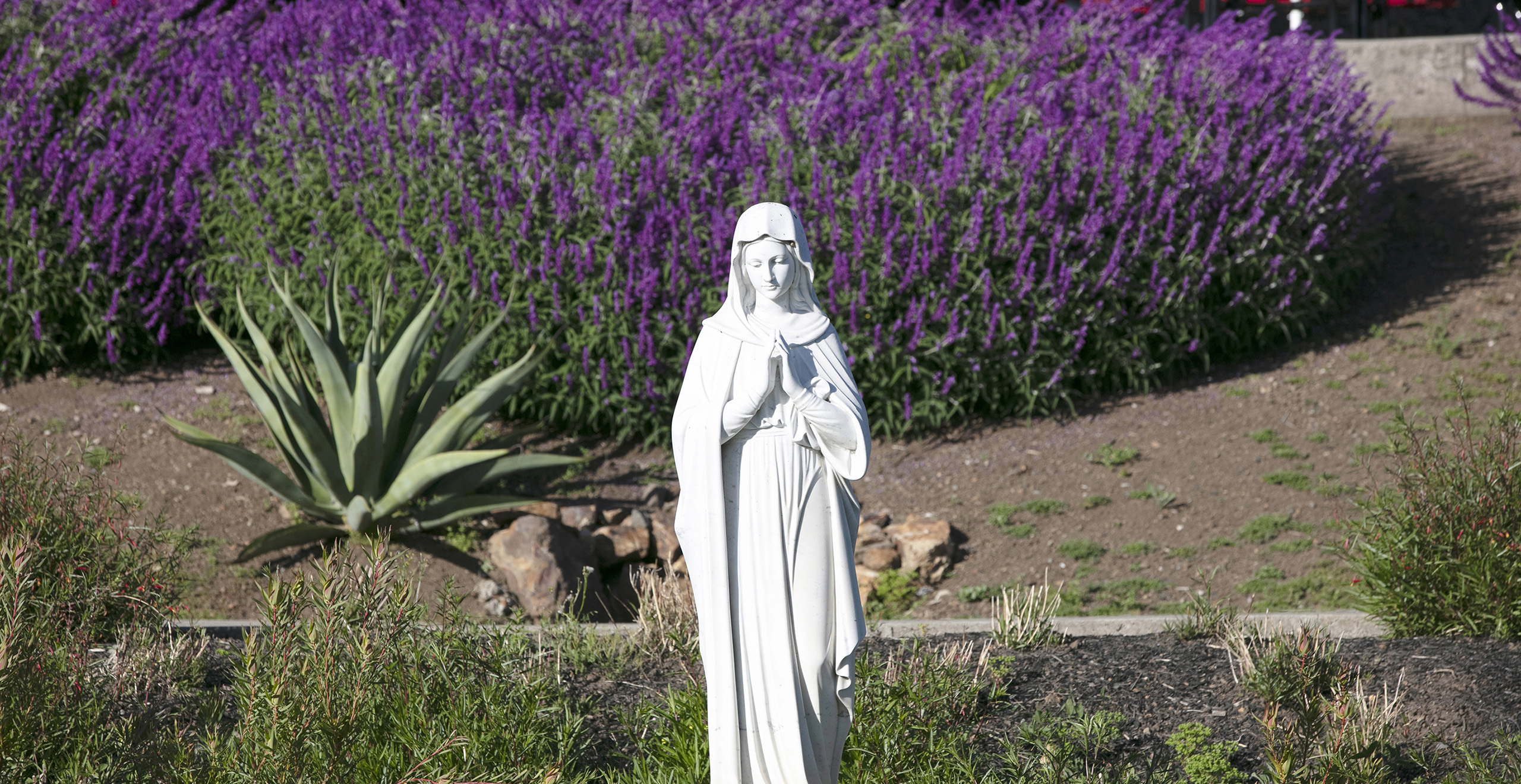 Statue in front of garden on Holy Names Campus