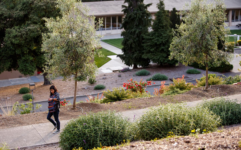 HNU landscape image of a student walking