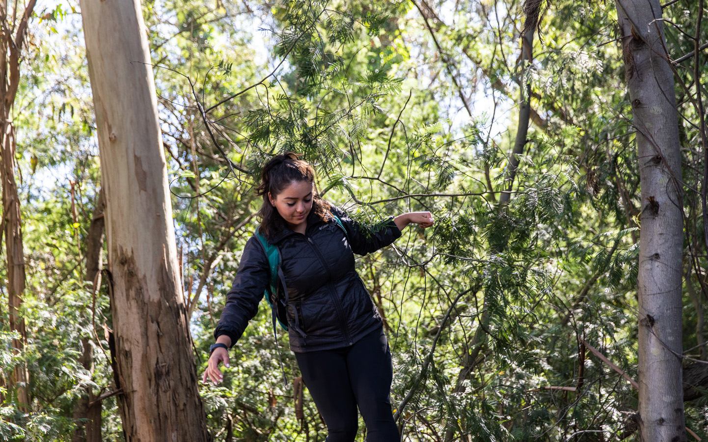 Holy Names University student hiking in San Francisco Bay Area woods