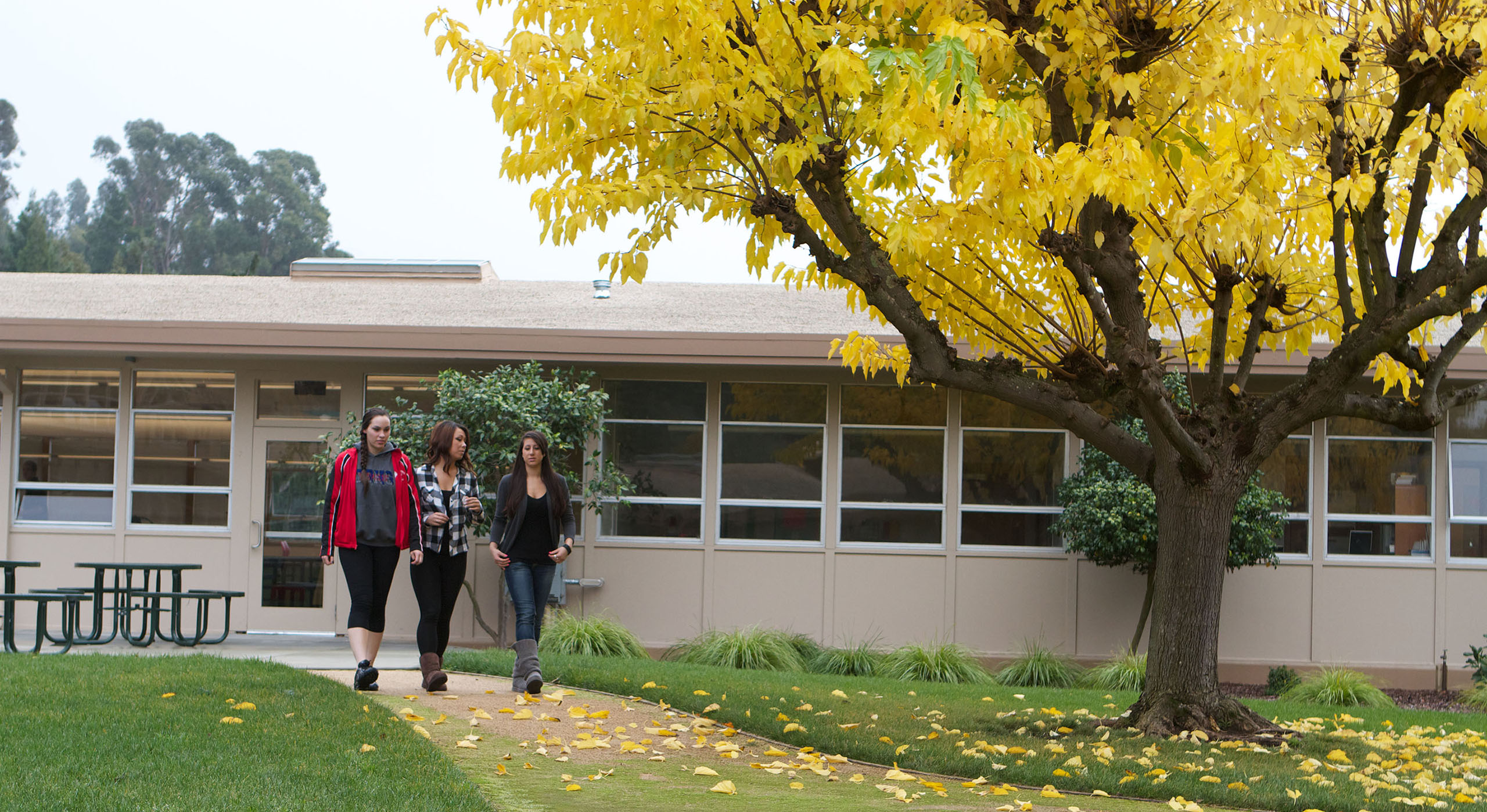 three Holy Names University students walking together away from campus building
